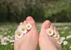 daisy feet